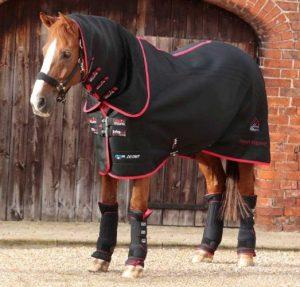 Couverture infrarouge pour chevaux