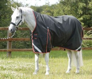 couverture cheval protection garrot