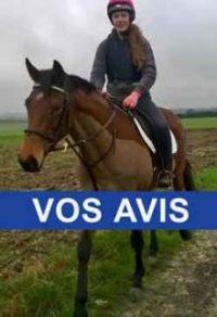 Avis clients tondeuses Chevaux Liveryman