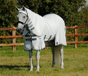 Protections anti-mouches Cheval